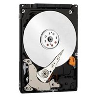 Hard drives, SSDS Western Digital WD3200LPCX
